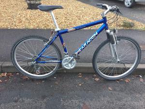 Adults Saracen mountain bike