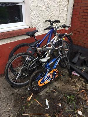 Bikes x 3