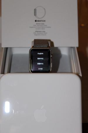 Apple Watch Stainless Steel Milanese Loop