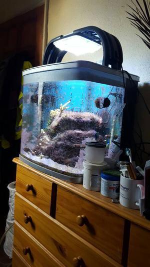 Marine tank kent bio reef 94 l set posot class for Aquarium marin complet