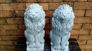 Beautiful pair of Lion statues