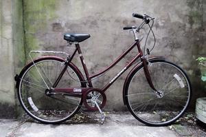 COUNTY, 21 inch, 54 cm, vintage ladies womens dutch style road bike, loop frame, 3 speed