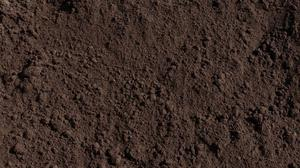 Screened top soil for sale exeter posot class for Screened soil