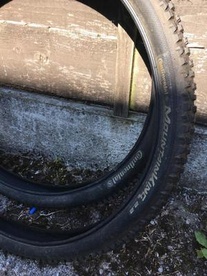 2x Continental mountain bike tyres