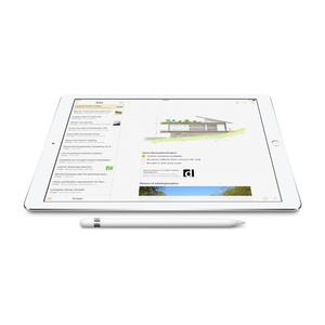 iPad Pro 9.7 Wi-Fi+Apple Pencil+Leather Covers for both