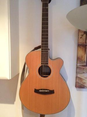 Tanglewood Discovery Semi Accustic Guitar