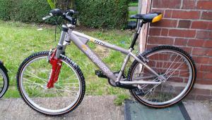 team SARACEN xray (jump) mountain bike for sale