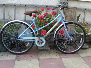 ladies city universal bike