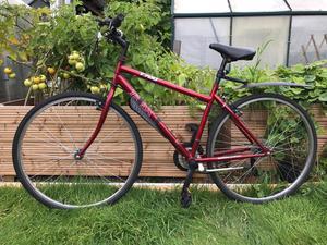Trax T700 Hybrid Bike Red Steel Frame Posot Class