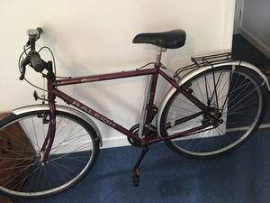 Pioneer classic Raleigh bike for sale!