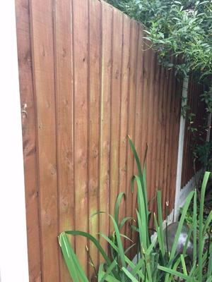Two 5ft high x 5ft wide wood fence panels