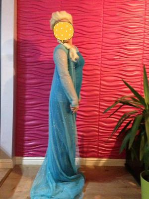 FROZEN Anna and Elsa dresses with wigs