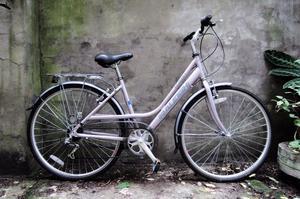RALEIGH PIONEER 1. 18 inch, 56 cm. Ladies womens hybrid road bike, 18 speed