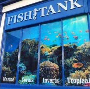 Fish Tank Warwickshire