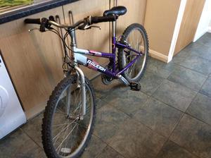 Raleigh crush bike