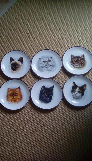 Derick Bown CAT plates Fine Bone China Set of 6
