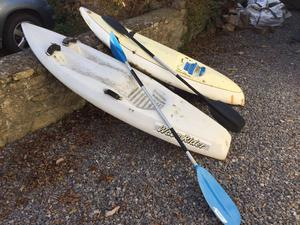 For sale 2 wave riders with paddles