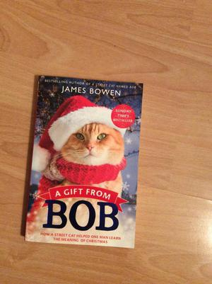 A gift from Bob paperback book