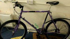 Raleigh mountain bike 21""