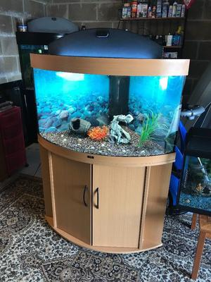 Juwel full set up in leicester posot class for Fish tank set up