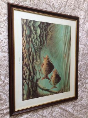 "Carp fishing print ""The Gravel Pit"" Limited edition"