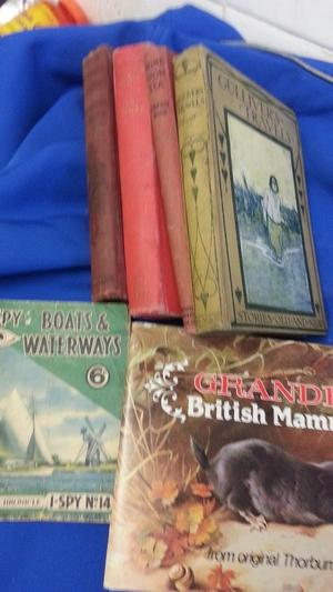 Vintage - Antique books x 4 titles for sale and a couple of collectables