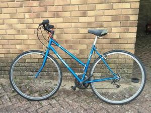 Ladies bicycle bargain