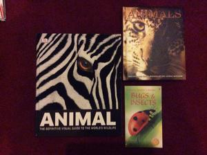 3 x fact animal, bugs and insects books - good condition