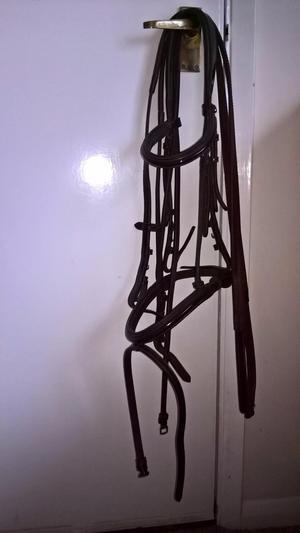 John Whitaker dark brown patent leather cob size bridle/rein