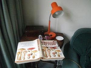 Lamp - Adjustable Reading Lamp