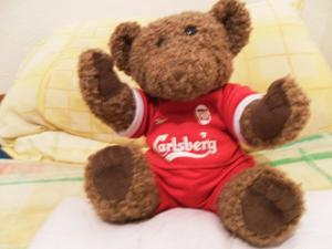 liverpool teddy in good condition
