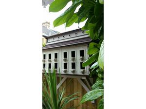 Wall mounted dovecote. in Cardiff