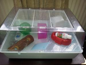 Hamster cage and book
