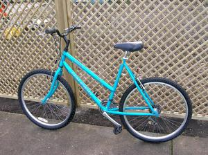 Ladies Raleigh Vixen Mountain Bike