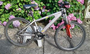 Saracen xray mountain bike