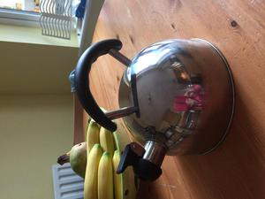 Camping kettle
