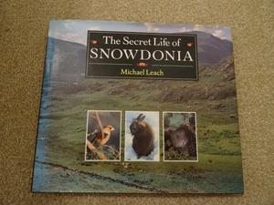 The Secret Life of Snowdonia