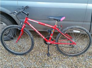 universal rapid reactor 10 speed mountain bike in Winchester