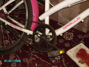 Ladies / Girls Cruiser Bike