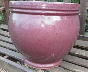 Large glazed plant pot