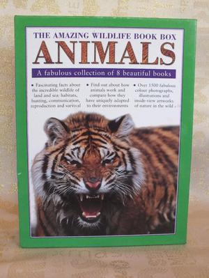 WILD LIFE BOOK BOX OF ANIMALS.