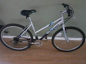 Raleigh Hollywood girls bike