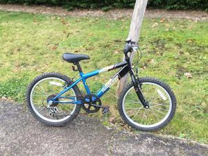 Boys Raleigh mountain bike.
