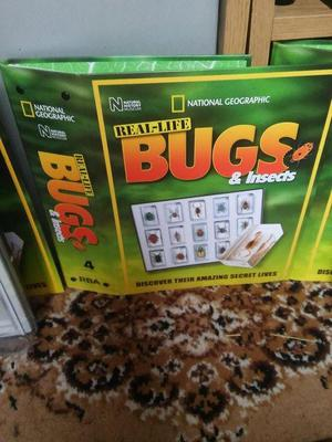 Complete set of bugs and magazines for sale.