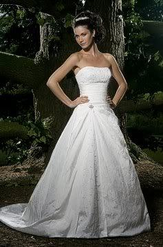 Ellis wedding dress pale Champagne size  DESIGN