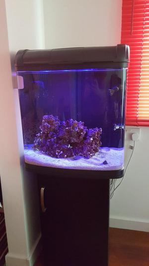 Kent Marine 94 aquarium & lots of accessories