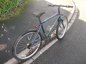 raleigh boulder bike