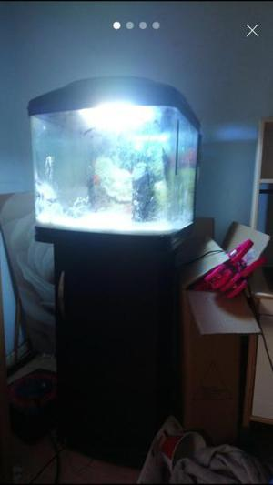 My wife's brand new fish tank and cabinet for sale