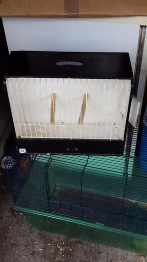 Budgie Show Cases