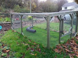 Large outdoor rabbit run for sale